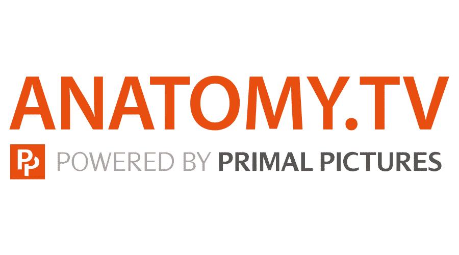 Anatomy.tv Logo Vector